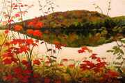 """Warm September Day, Rock Lake Algonquin"""